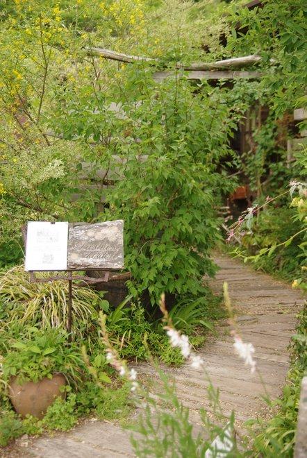 花フェスタ2013  Part3 ターシャの庭_e0171336_1825545.jpg