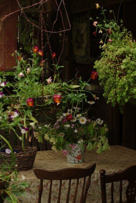 花フェスタ2013  Part3 ターシャの庭_e0171336_18264521.jpg