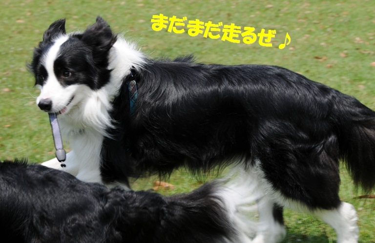 c0147241_18345194.jpg