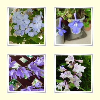 f0031546_13524919.jpg