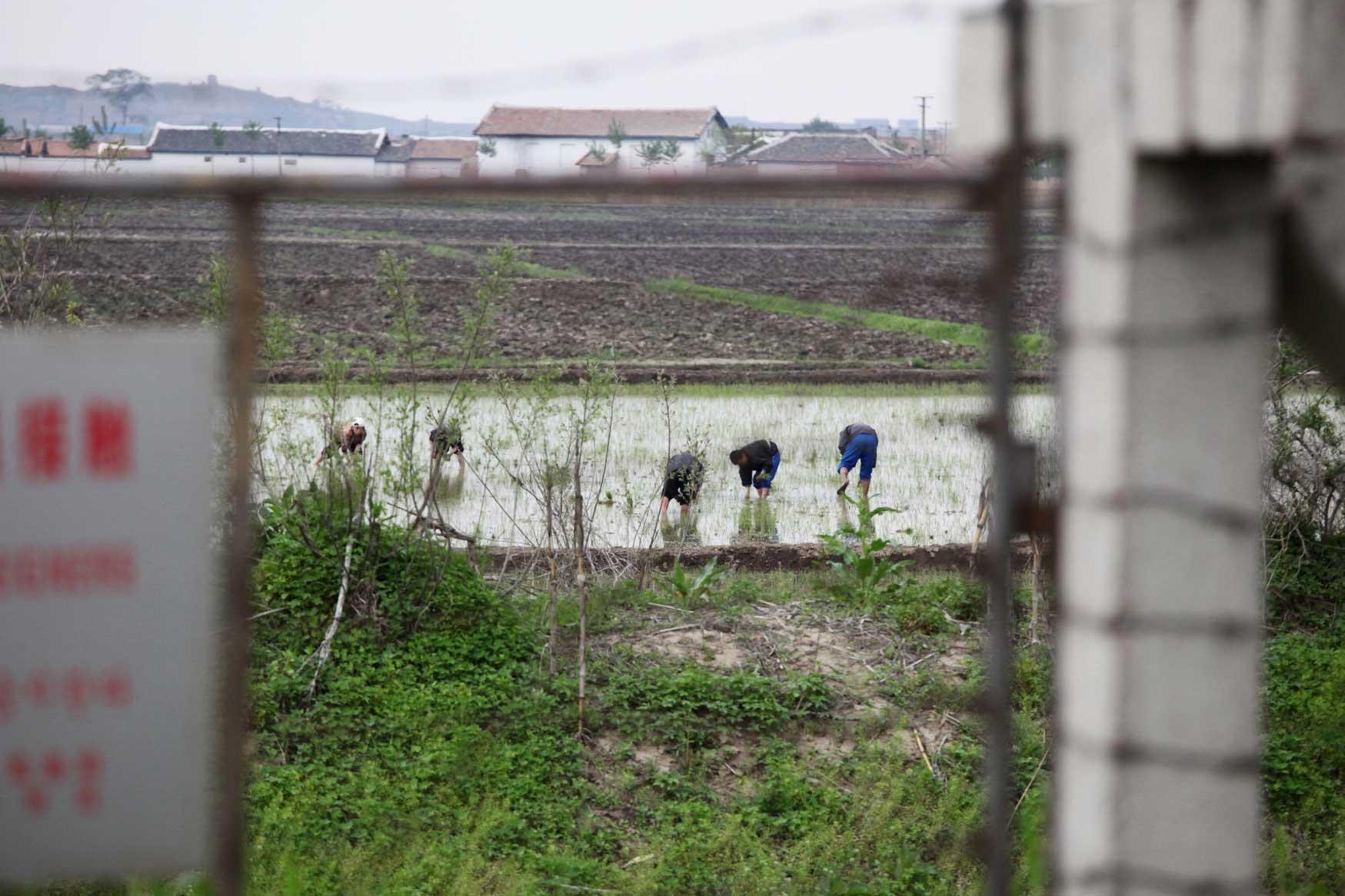 中朝陸の国境では兵士も農民も目と鼻の先(遼寧省丹東市)_b0235153_15571571.jpg