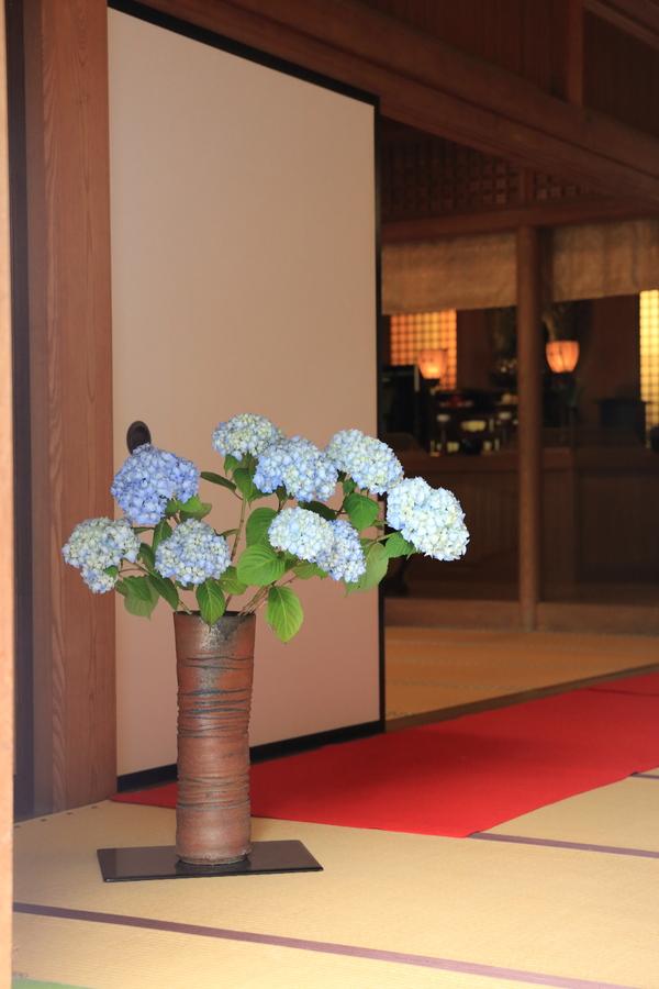 北鎌倉の紫陽花_b0275998_1121990.jpg