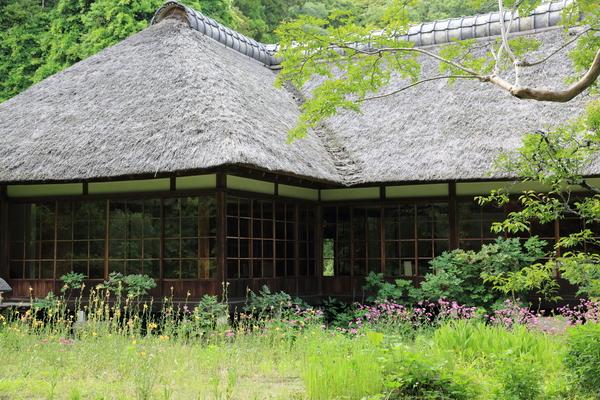 北鎌倉の紫陽花_b0275998_118316.jpg