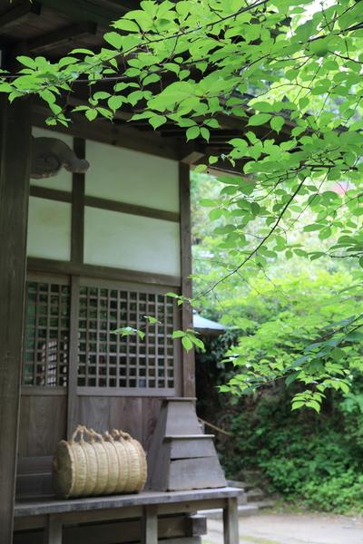 北鎌倉の紫陽花_b0275998_119464.jpg
