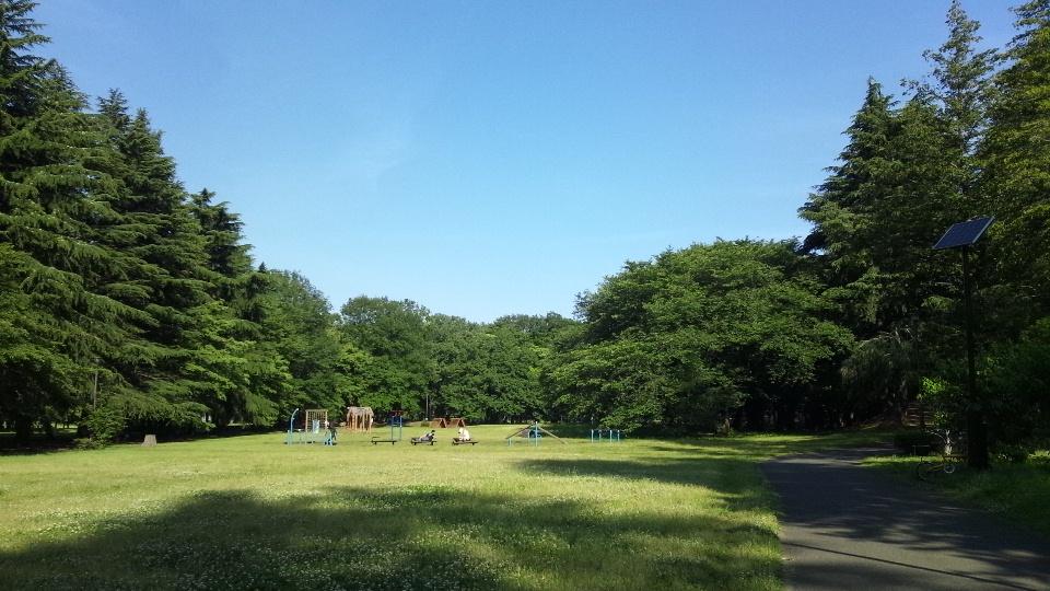 walk&jogging_d0260803_9162398.jpg