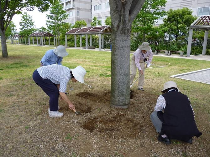 【5月29日ガーデンクラブの活動】_e0235911_1941017.jpg