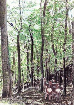 鳥と森展~豊 庸夫と嵯峨山 務~ 2013.6.7~24_b0237338_912096.jpg