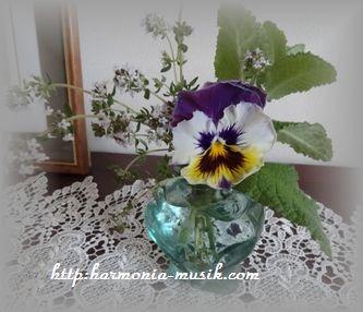 庭の花と・・_d0165645_1421399.jpg