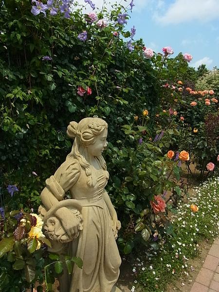 花菜ガーデン_a0223650_21512896.jpg