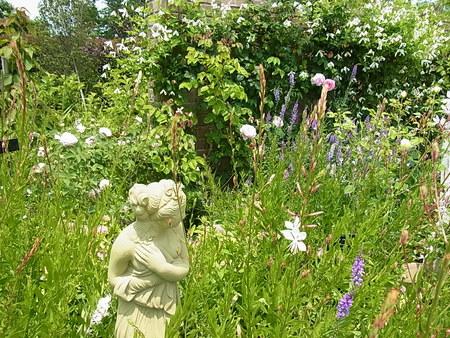 花菜ガーデン_a0223650_2152546.jpg