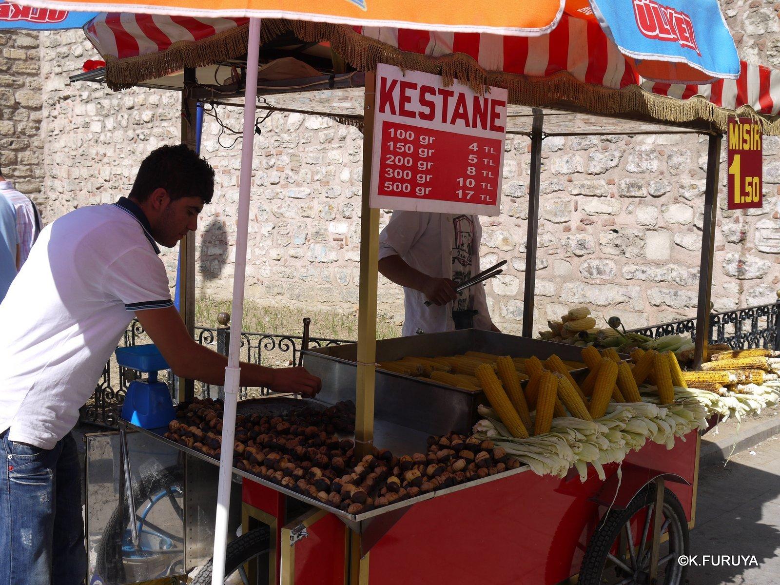 トルコ旅行記 37 イスタンブール旧市街その1_a0092659_18464134.jpg