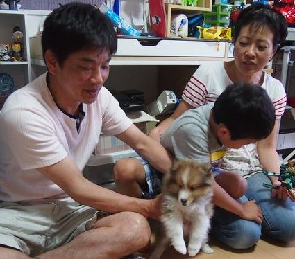 子犬達の旅立ち_a0139367_21592243.jpg