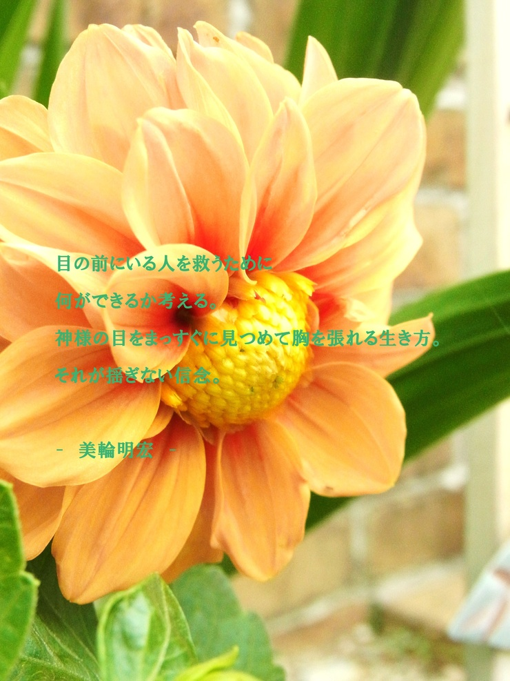 d0199578_2274246.jpg