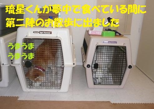 f0121712_3243793.jpg