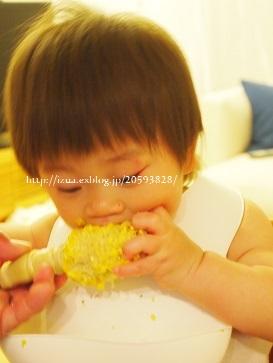 1歳の息子のこと_e0214646_1345980.jpg
