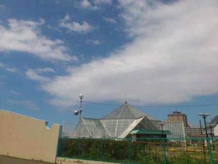 函館熱帯植物園_b0106766_2029140.jpg