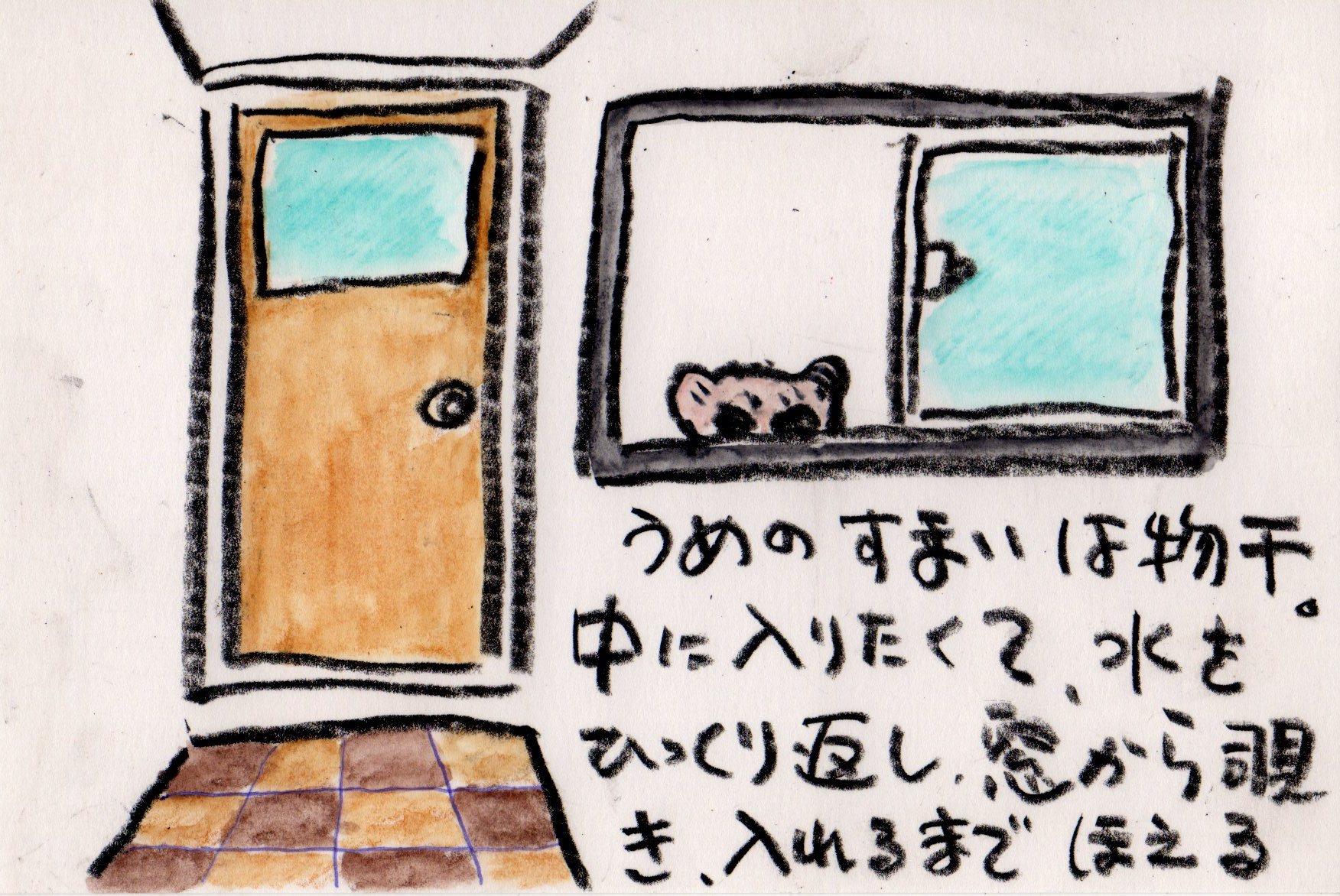 うめきち 屋内で飼う_e0232277_20423541.jpg