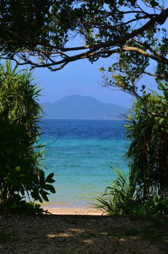 「島の先生」のスタッフー、懐かしい景色でしょー♪_e0028387_22175985.jpg