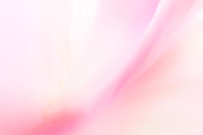 f0185802_22311662.jpg