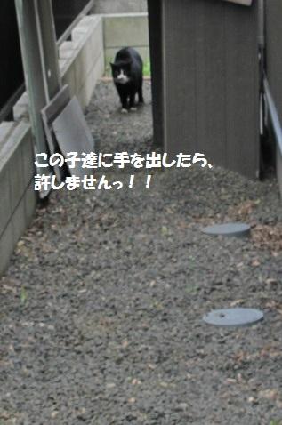 b0075609_1232537.jpg