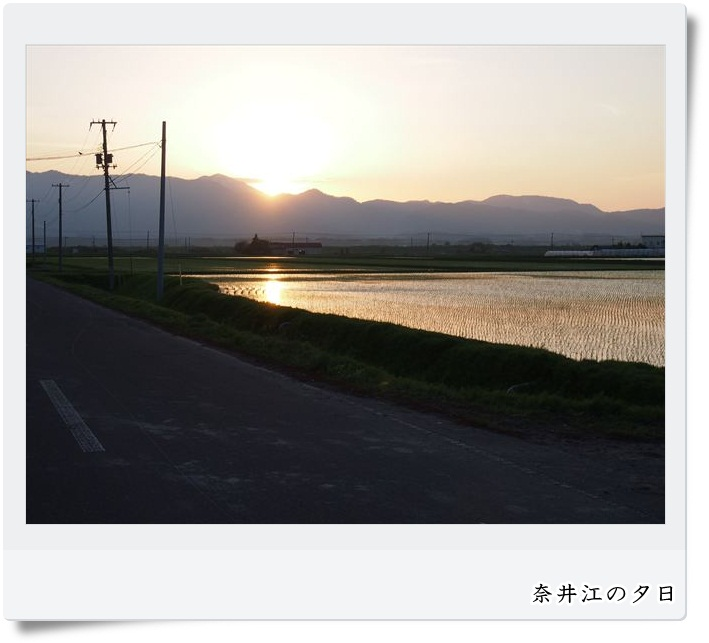 d0069311_1049133.jpg