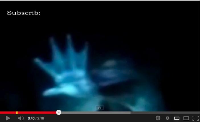 人魚の新たなる証拠「Mermaid New Evidence」:あの二人がテレビに登場!?_e0171614_13291654.jpg