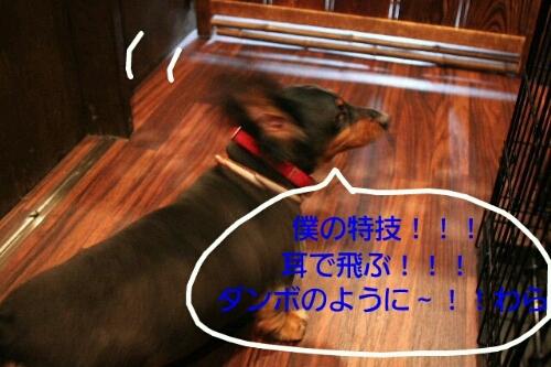 これから~♪♪_b0130018_18203914.jpg