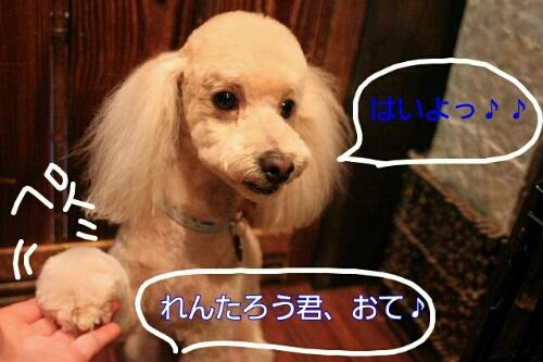 これから~♪♪_b0130018_1944476.jpg