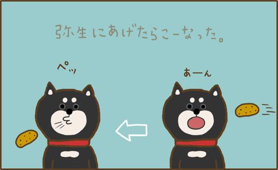 d0212419_20105095.jpg