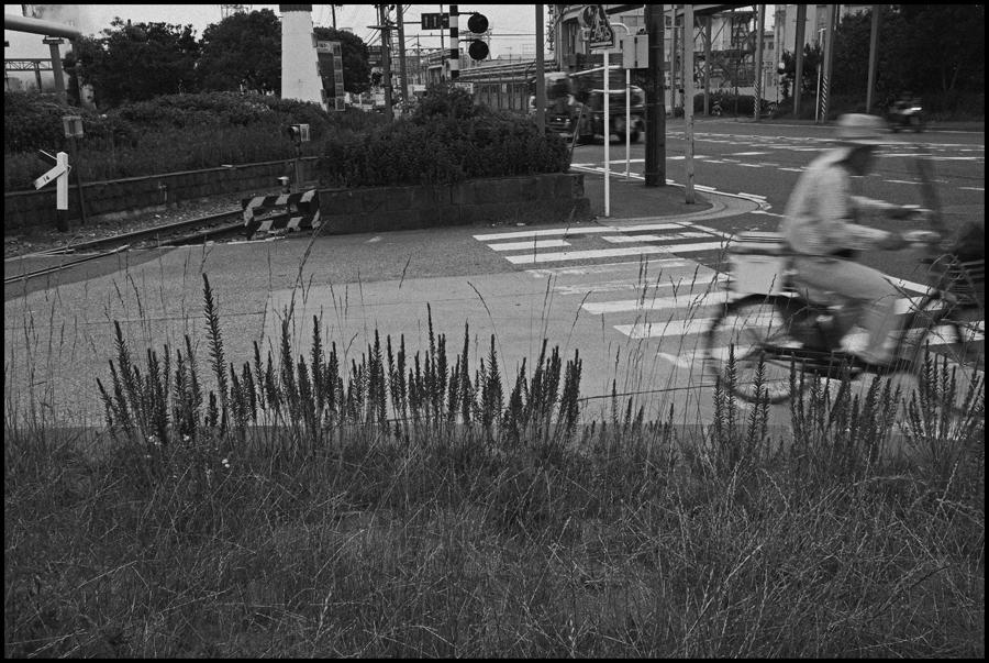 【Snapshot】 モノクロームの夜光 _c0035245_237394.jpg