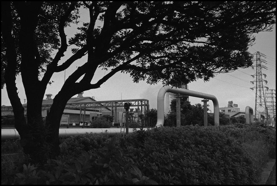 【Snapshot】 モノクロームの夜光 _c0035245_2462437.jpg