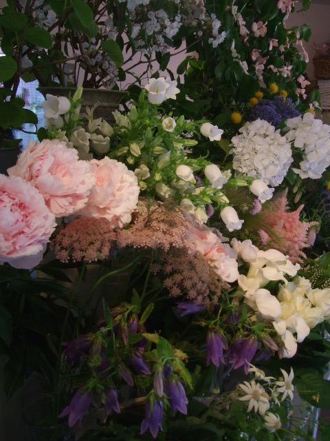 オークリーフ(六月の花たち)_f0049672_14163234.jpg