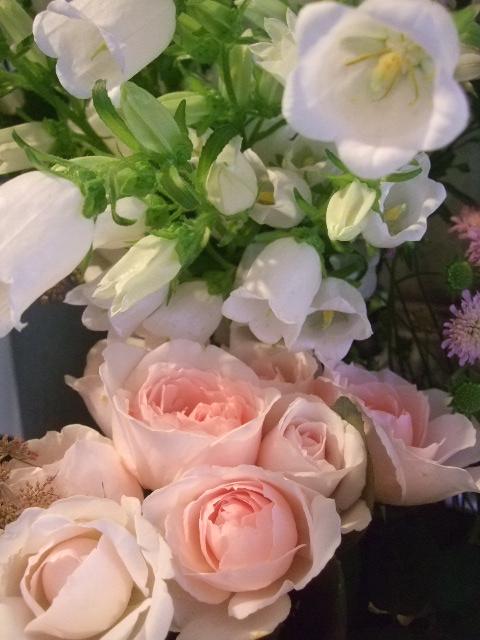 オークリーフ(六月の花たち)_f0049672_1434925.jpg