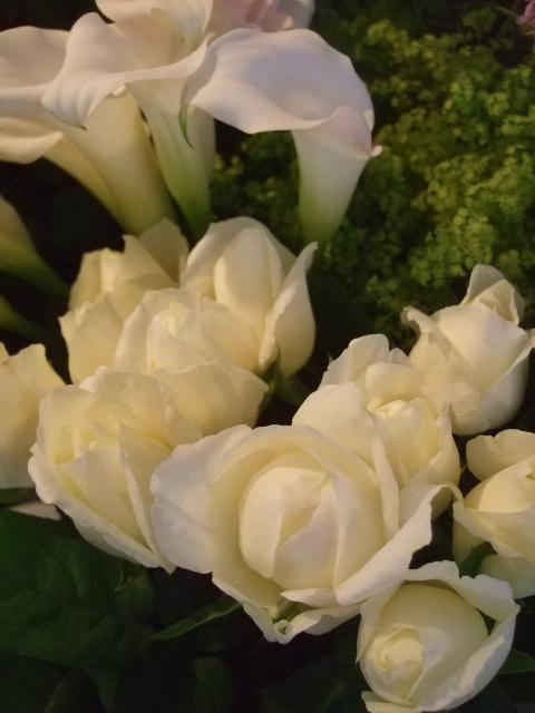 オークリーフ(六月の花たち)_f0049672_1444831.jpg