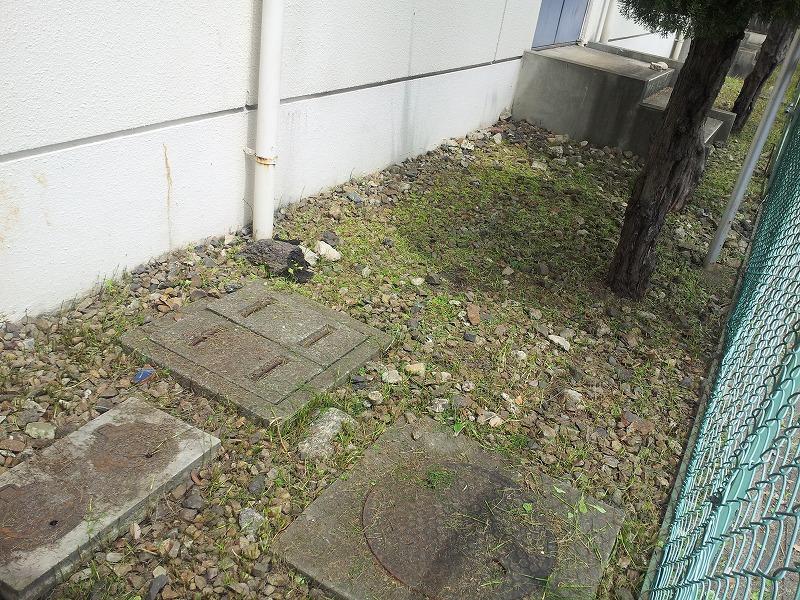 25年度春の草取り活動_d0262773_9503089.jpg