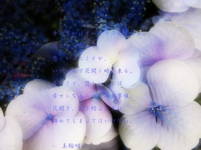 d0199578_1758013.jpg