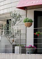 イタリアン レストラン_c0114811_14294989.jpg