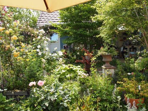 2013年 茨城のお庭その5_c0167112_229554.jpg