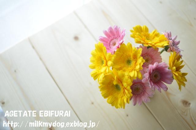 e0210934_16271137.jpg