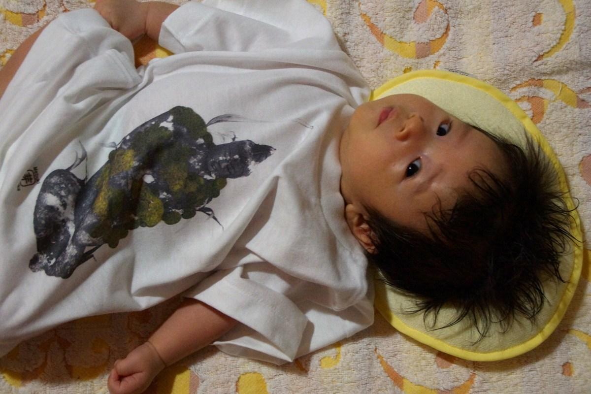 芽ぶきさん画・デザインガーデン賞受賞の東日本支援チャリティ苔観音Tシャツミニサイズが届き赤ちゃん試着_f0006713_21231989.jpg