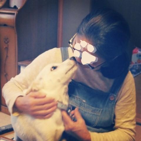 そもそも、犬を飼うことになった理由(ワケ) ⑨_b0090517_14494269.jpg