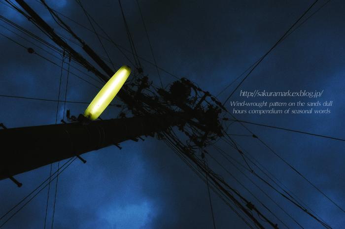宵雨。_f0235723_19142035.jpg