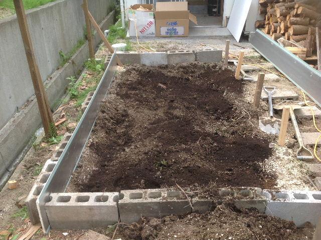 秒読み段階 家庭菜園と庭と諸々_f0031037_20234735.jpg