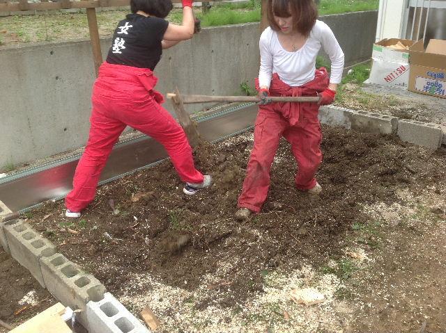 秒読み段階 家庭菜園と庭と諸々_f0031037_2024044.jpg