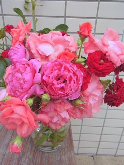 ご近所さんから素適なバラを_e0198052_188479.jpg