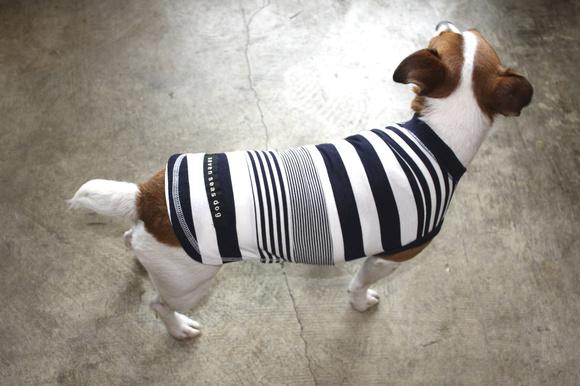 seven seas dog  Border Line T セブンシーズドッグ ボーダーラインTシャツ_d0217958_12182037.jpg