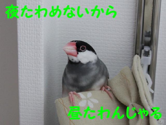 b0158061_2234950.jpg