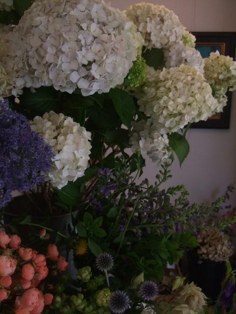 オークリーフ(スモークツリーと紫陽花)_f0049672_1618303.jpg