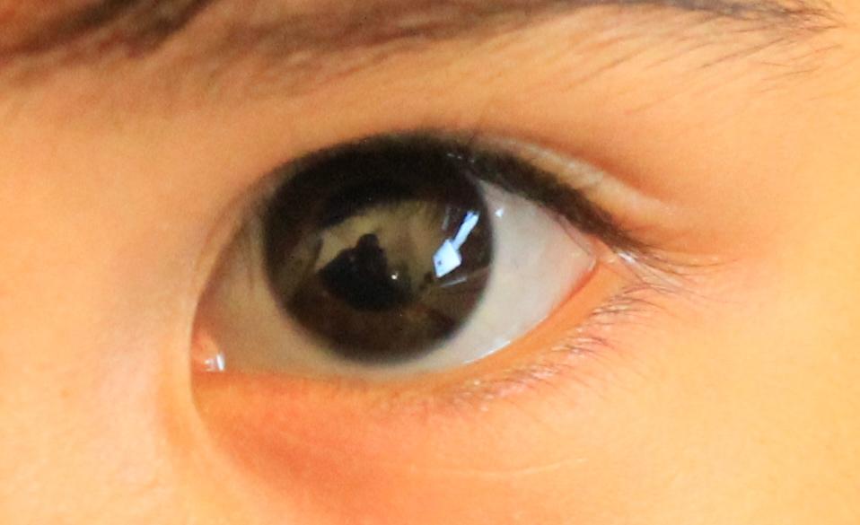 目の色 : やさしいトリエステ