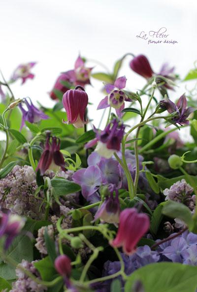 ジベルニーのお庭に思いを馳せて_f0127281_1242882.jpg